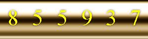 contador de visitas site